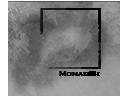 monarch's