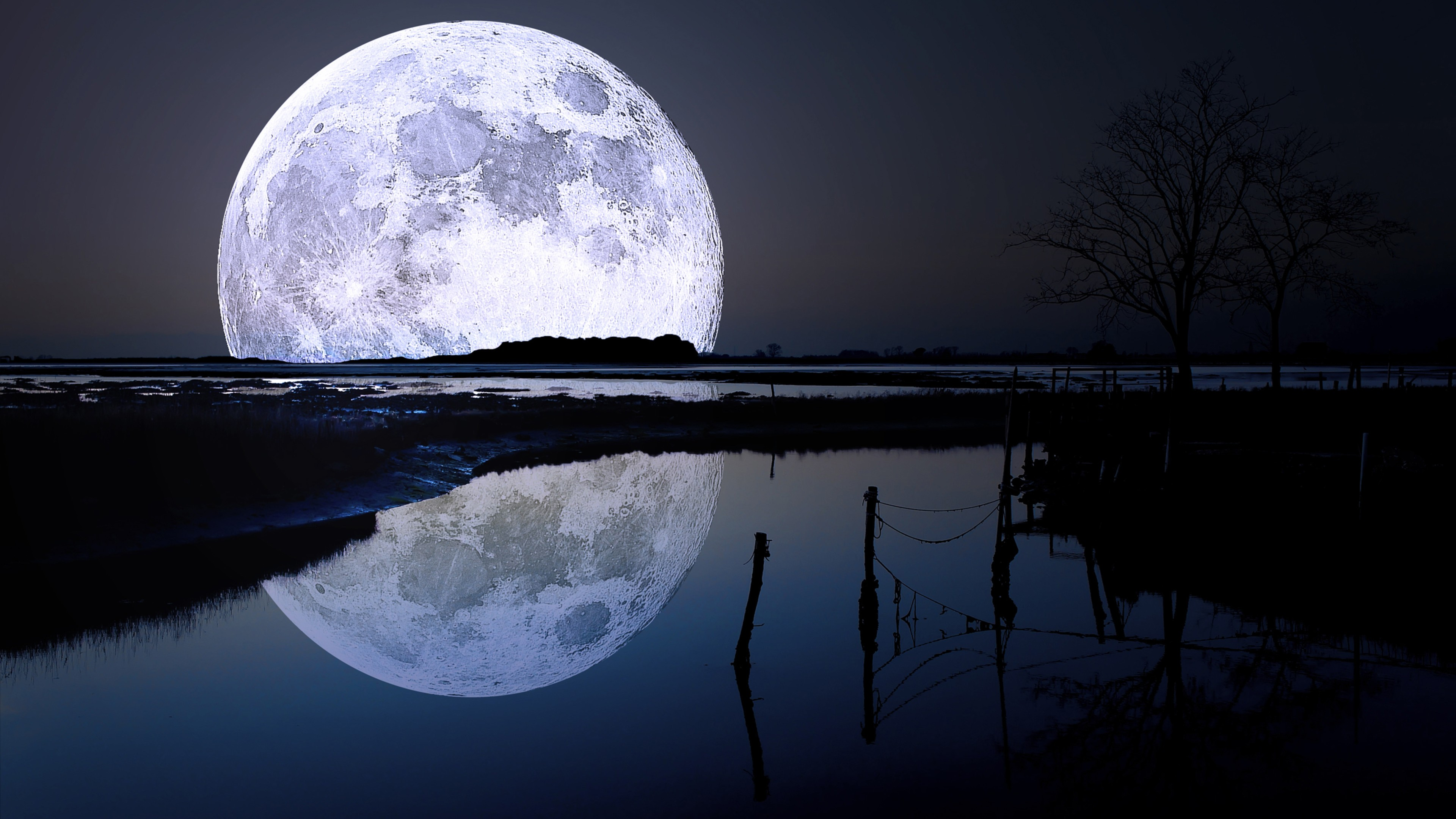 FULL MOON DIRECT ONLINE MARKETPLACE