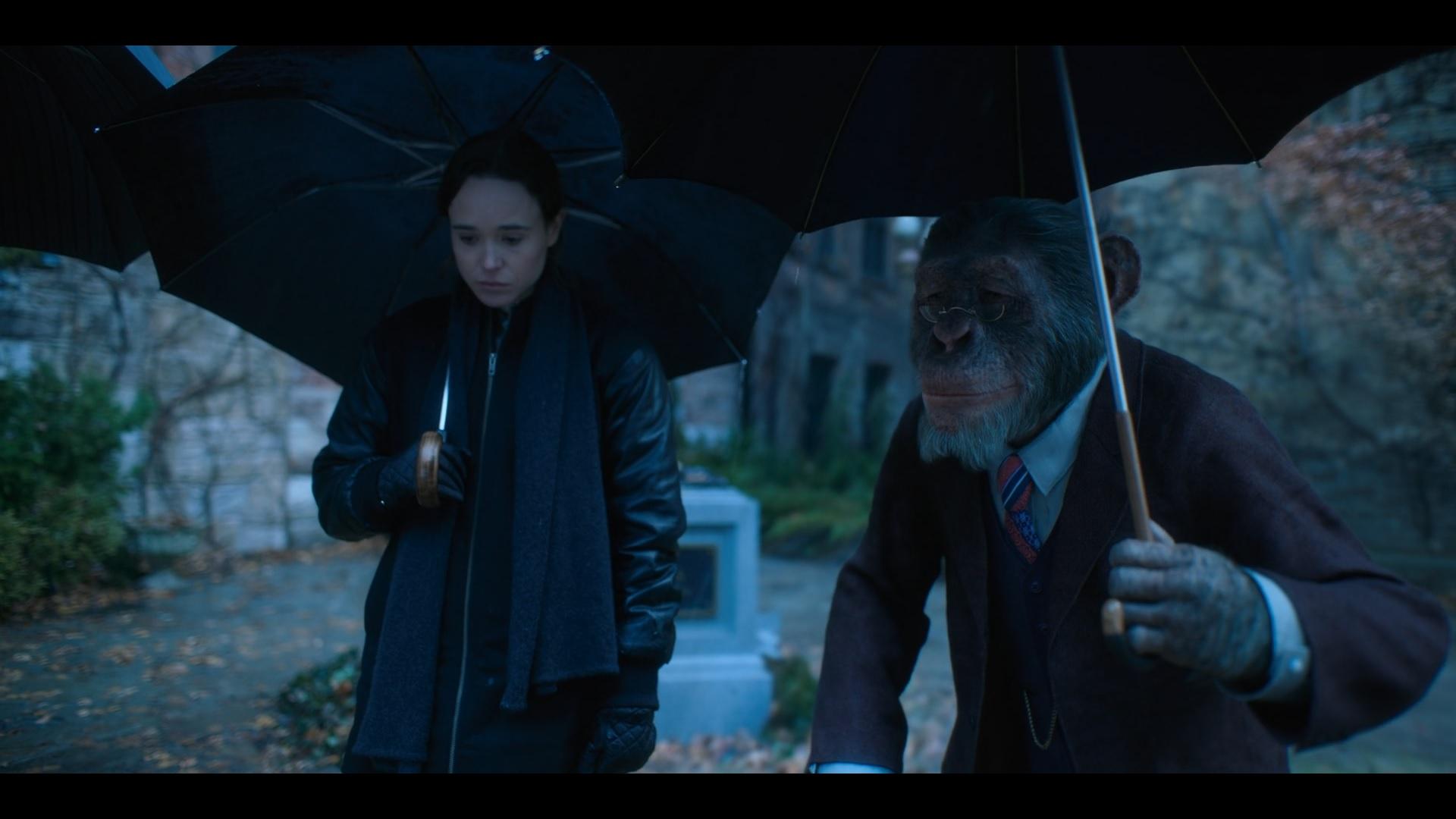 The Umbrella Academy | S01 | 2019 | Hindi + English | 1080p | 720p | NF WEB-DL