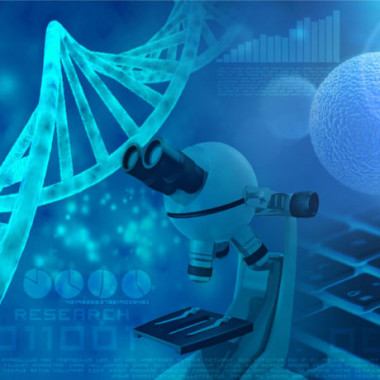 Bioinformatics is a branch of biology and computer science concerned with acquiring, storing, analyzing, and disseminating biological data, most commonly DNA and amino acid sequences. Bioinformatics is a branch of computer science that studies gene and protein functions, as well as evolutionary relationships and protein shape prediction.bioinformatics ishttps://bioinfo.cd-genomics.com/terminologies-and-key-concepts-related-to-bioinformatics.html