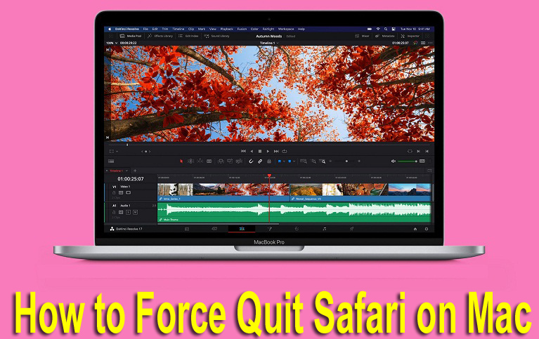 how to force quit Safari on Mac
