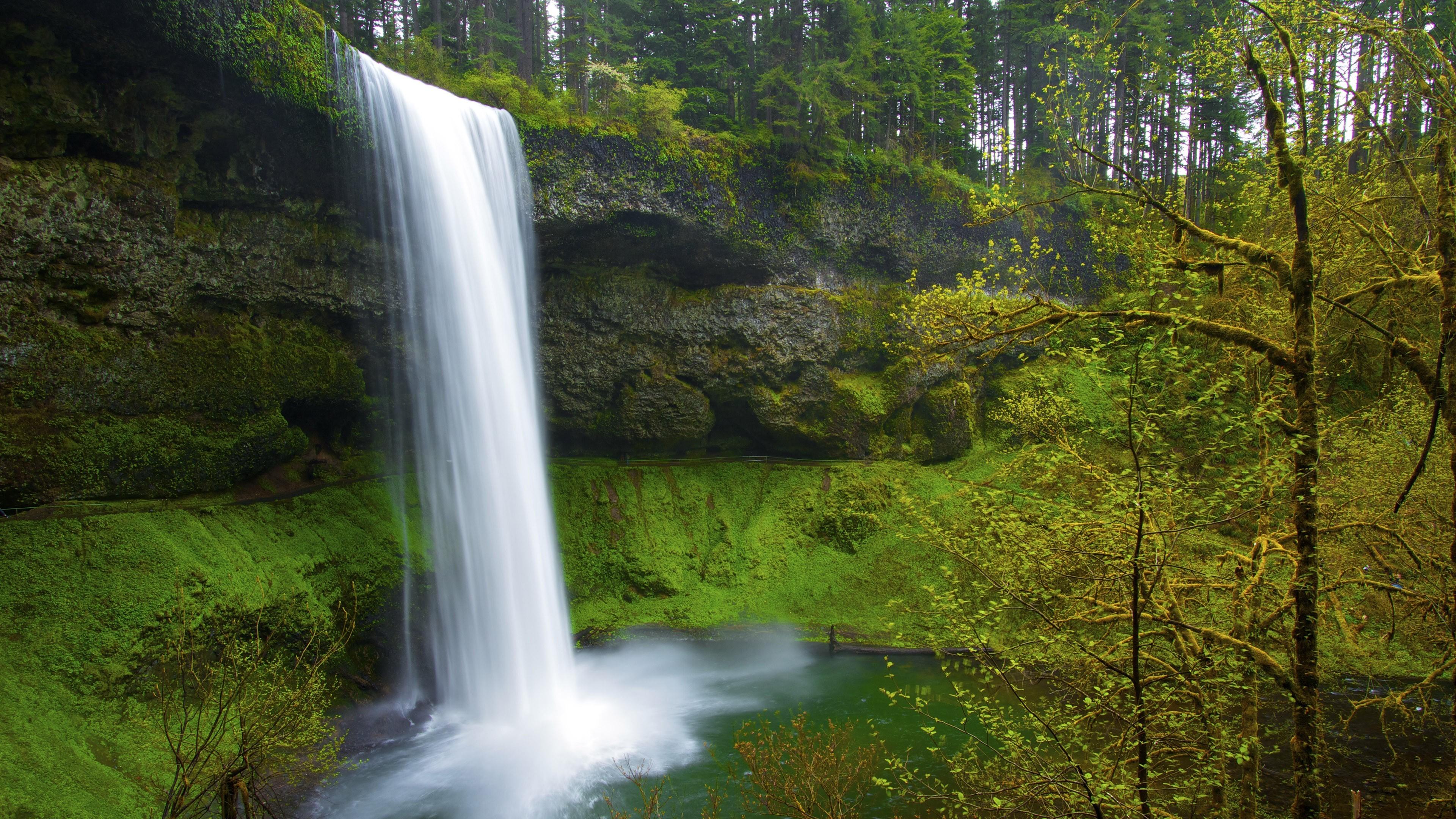 природа водопад река деревья бесплатно