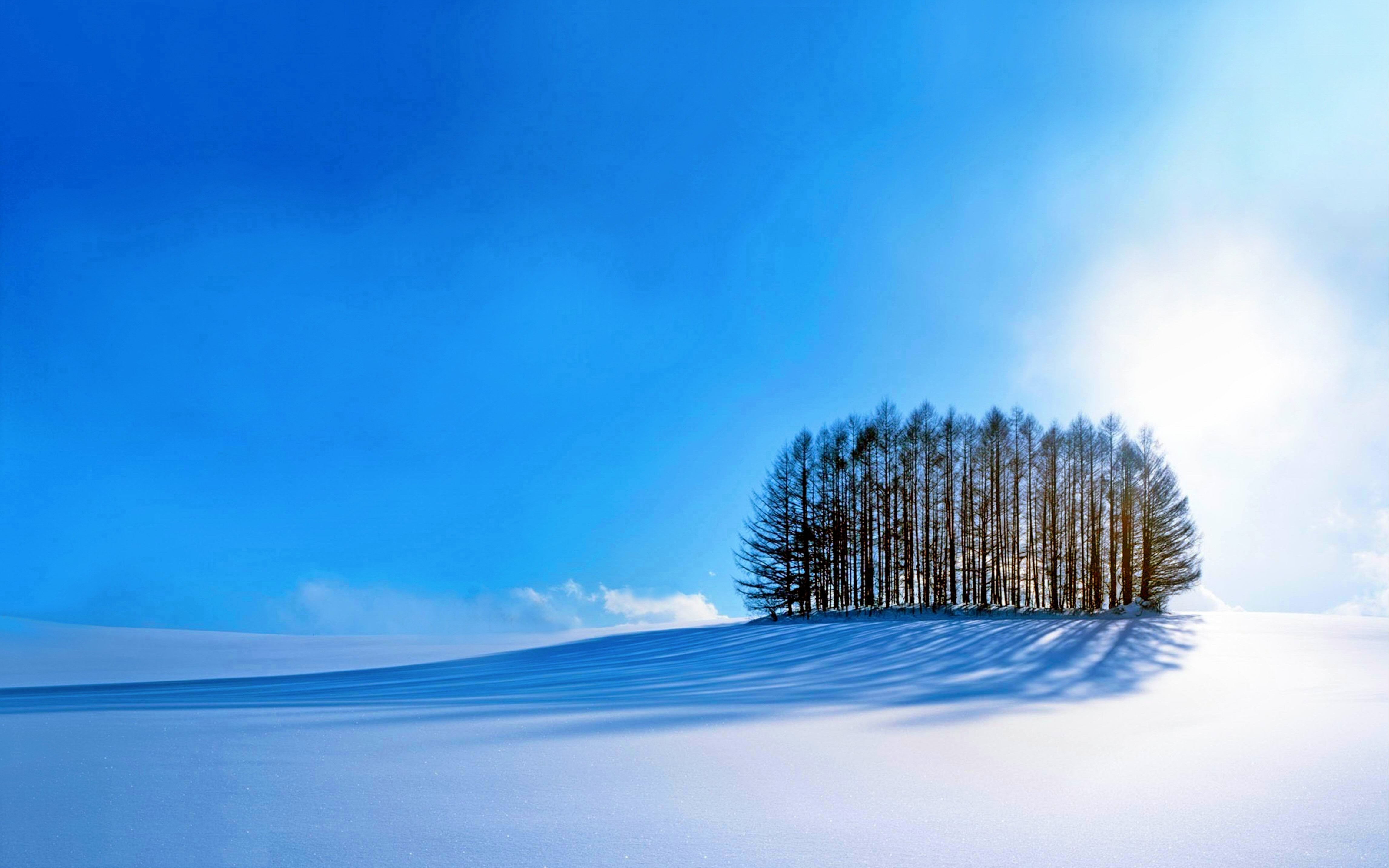 Скачать Обои На Стол Зима