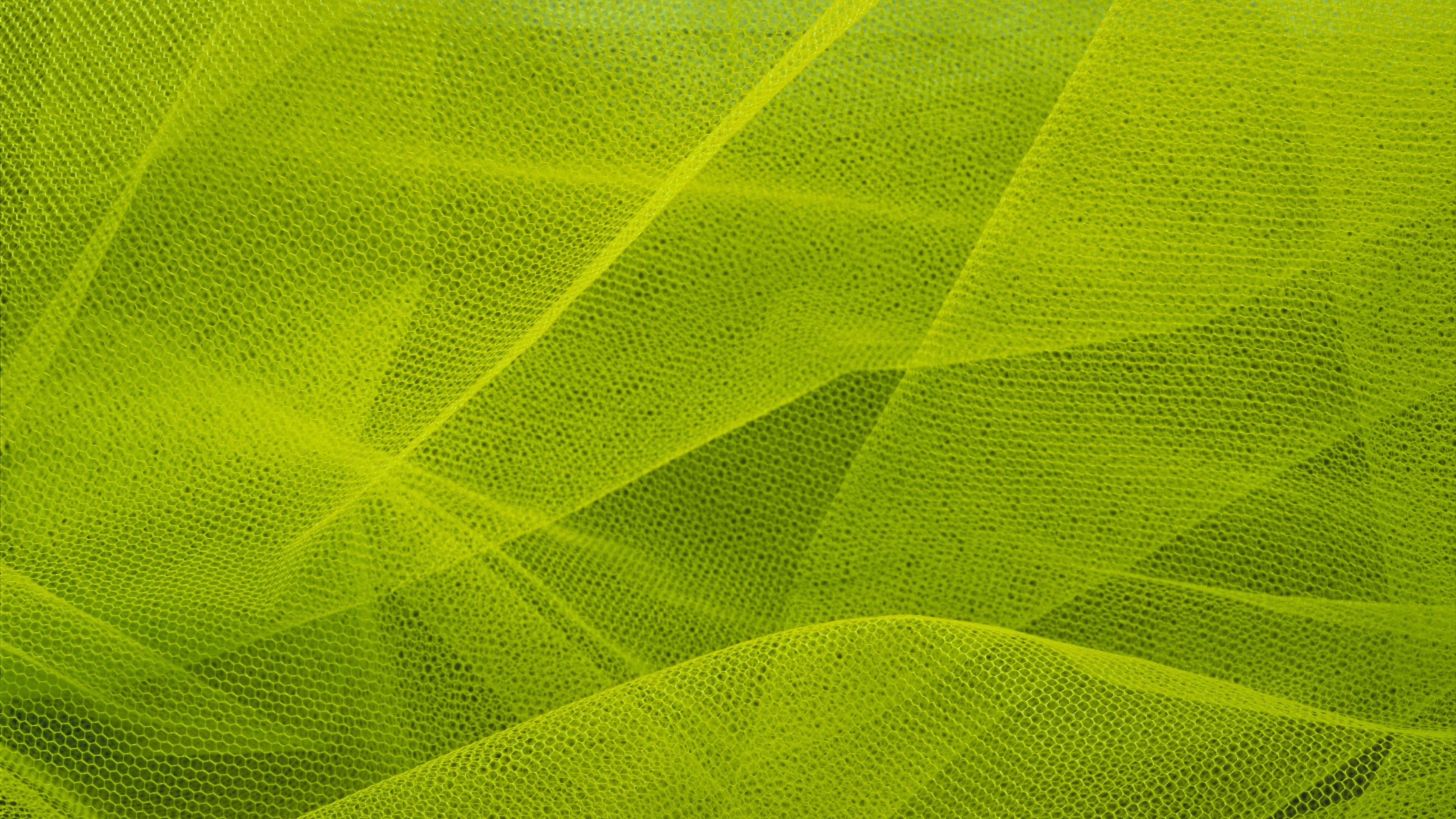 Листья сетка в хорошем качестве