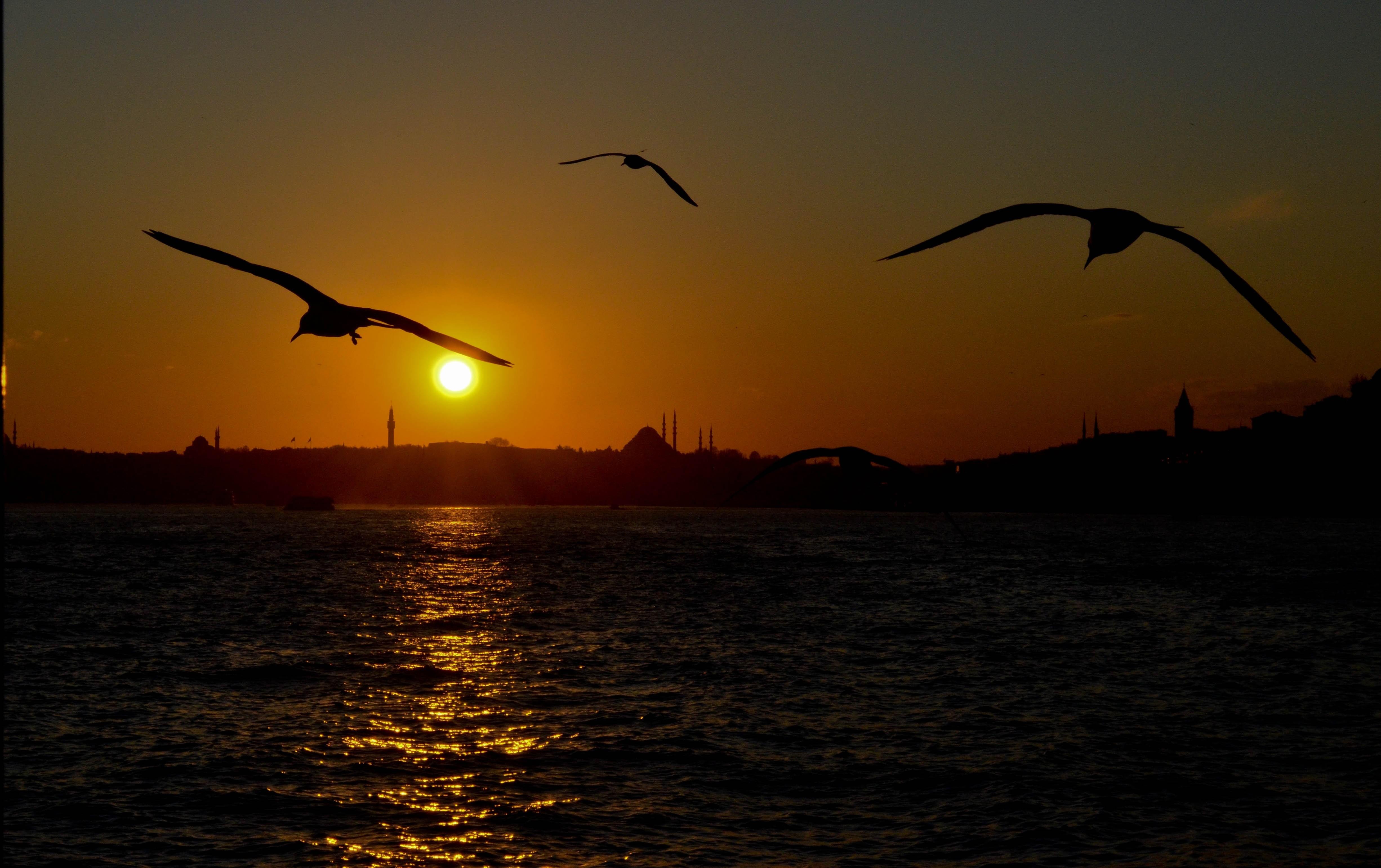 Турция Стамбул закат загрузить