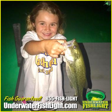 Underwater Fish Light 20400 Veterans Blvd Port Charlotte, FL 33954 (855) 347-4544  https://www.underwaterfishlight.com/led-fishing-lights-by-underwater-fish-light/