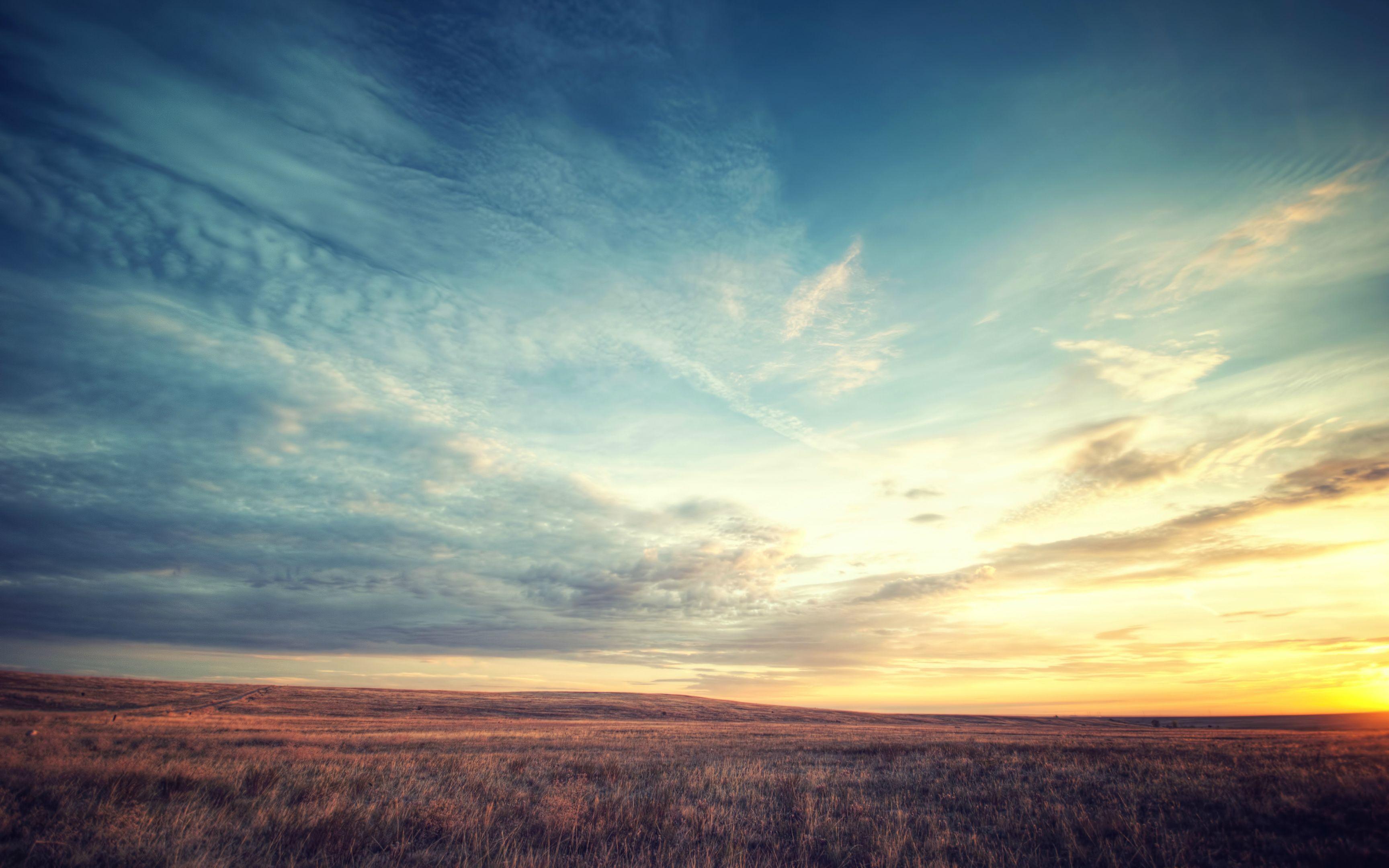 природа горизонт небо облака деревья солнце nature horizon the sky clouds trees sun бесплатно