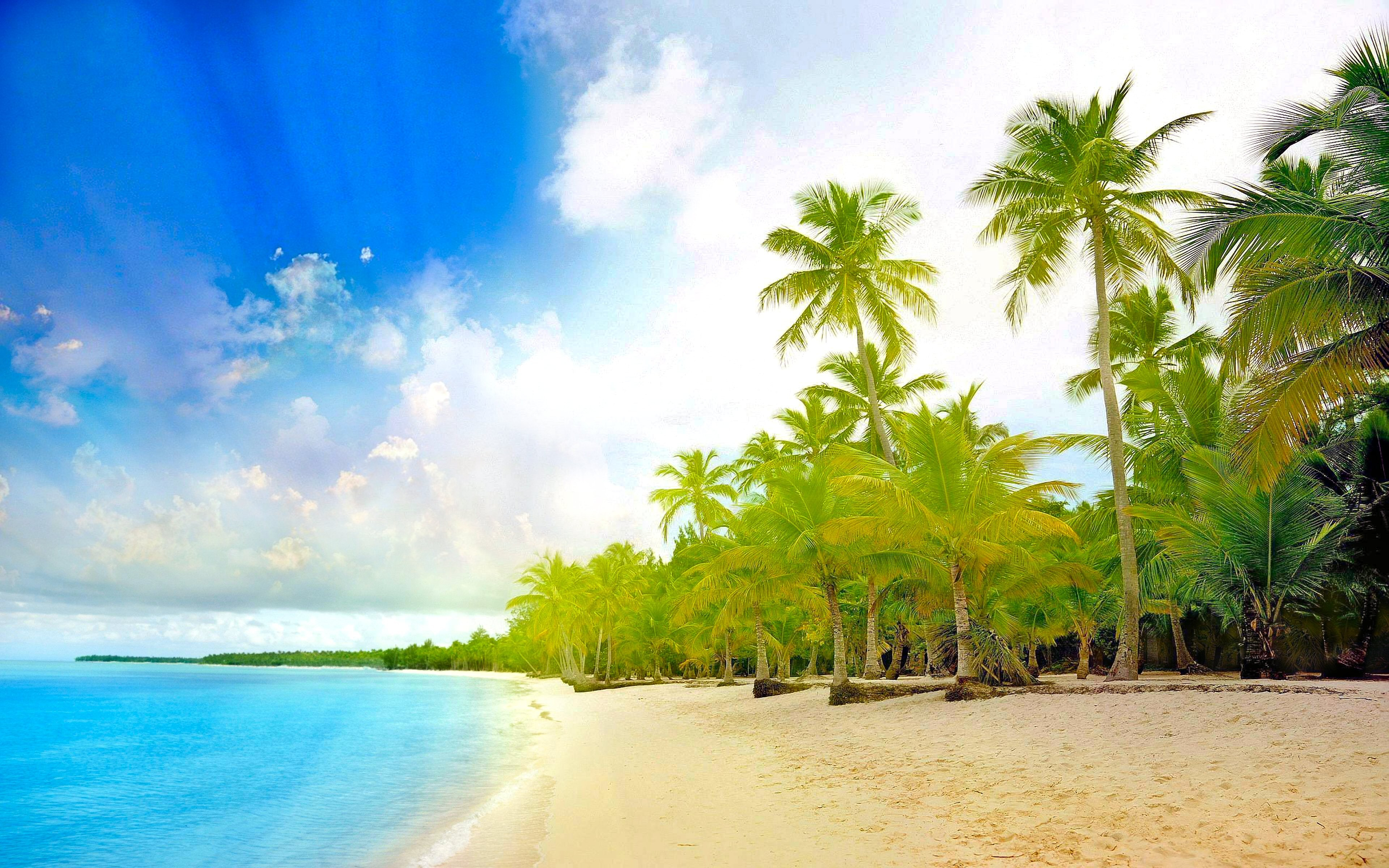 природа песок пляж дома море пальмы  № 3778401 загрузить