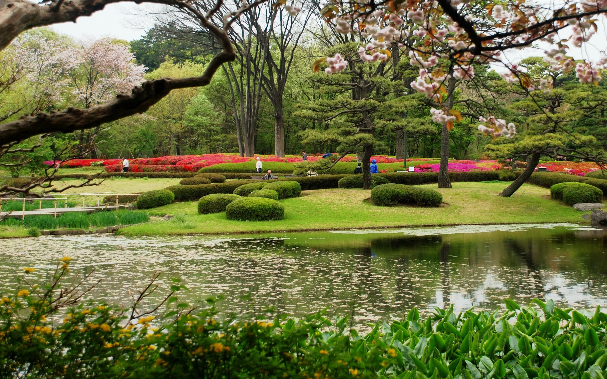 Spring Japanese Garden Wallpaper